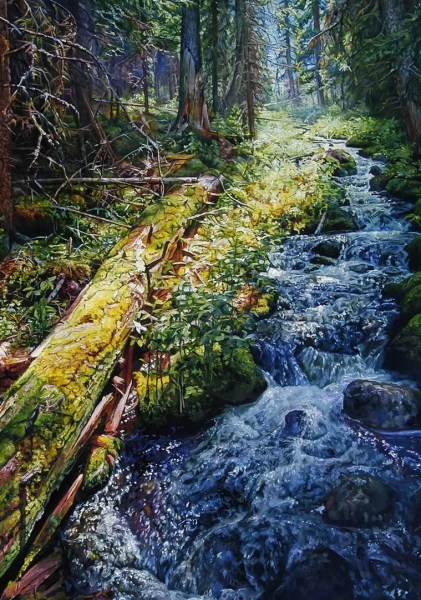 "Nature's Bridge 32"" x 48"""